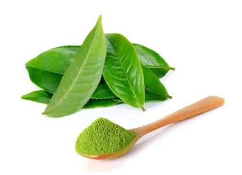 lá trà xanh tri mụn
