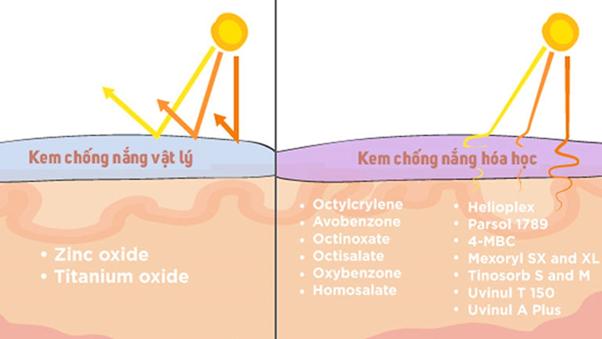 nguyên tác hoạt động của kem chống nắng