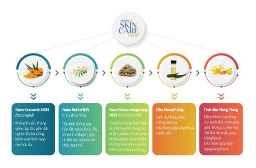 Thành phần trong gel trị mụn vietlife skincare nano