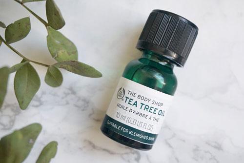 tinh dầu tea tree