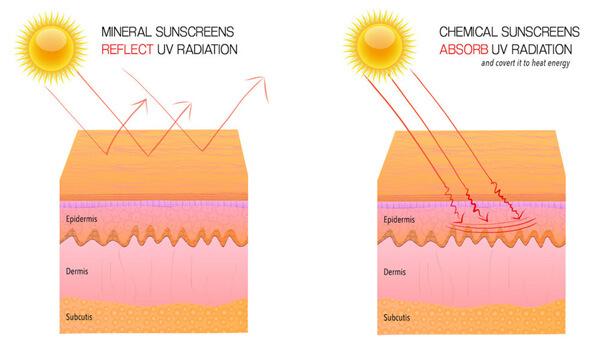 Cơ chế của kem chống nắng hóa học và kem chống nắng vật lý