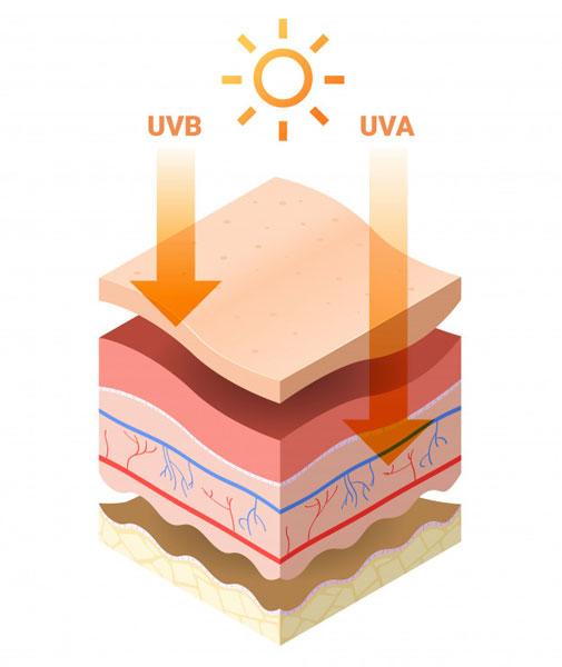 Mức độ tác động của UVB & UVB